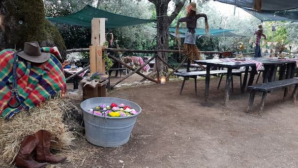 festa country parco degli ulivi